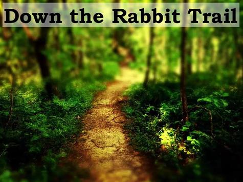 Down the Rabbit Trail