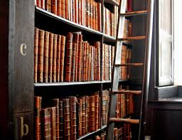 Leather Books with Ladder
