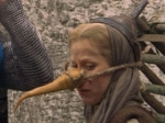 Monty Python Witch