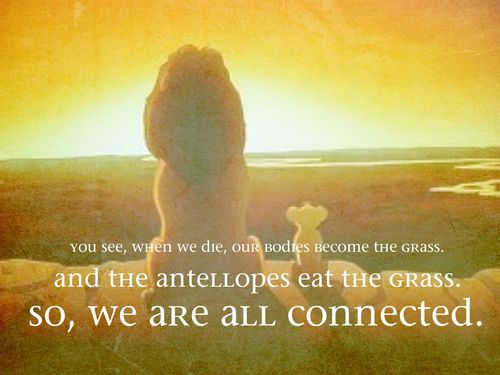 circle of life quote
