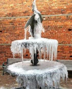 Frozen Swan New Bern