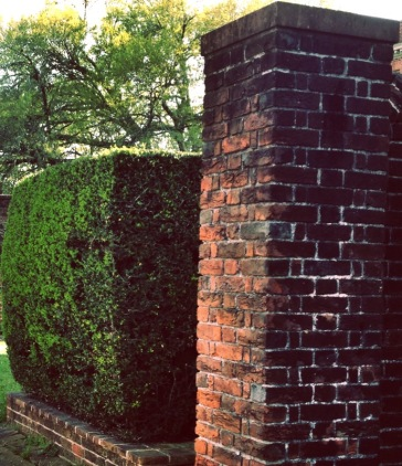 Bricks and Hedge