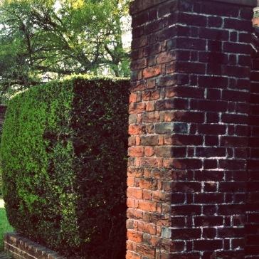 Bricks and Hedge