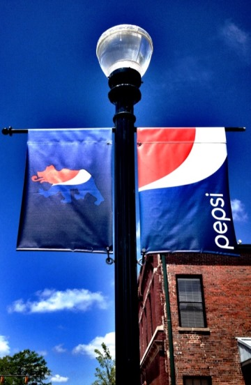 Pepsi New Bern Bear