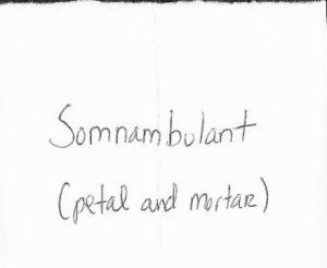 somnambulant prompt