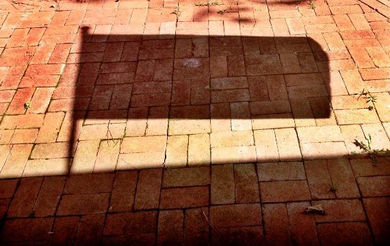 Flag Shadow on Bricks
