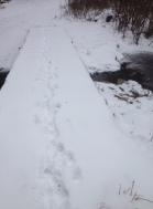The Footbridge 1