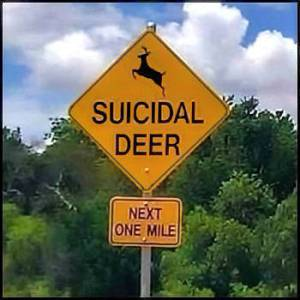 Suicidal Deer Sign