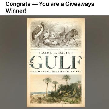 winning-the-gulf