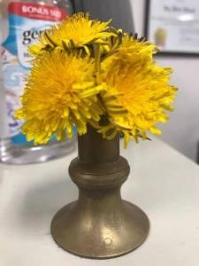 dandelions-in-brass-vase