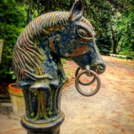 Middleton Place Hitching Post