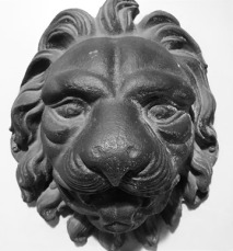 Old English Lion