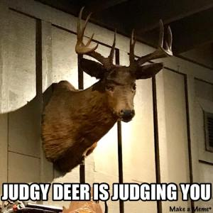 Judgy Deer is Judging You