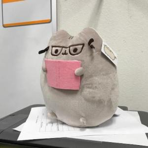 pusheen reading plush