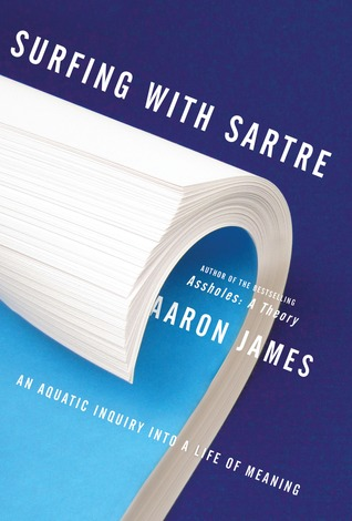 surfing with sartre goodreads cover